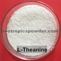 nootropic-powder-l-theanine